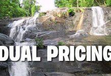 Dual Pricing